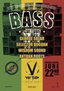 Mass Bass Reggae Party
