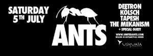 Ants, Ushuaia Ibiza